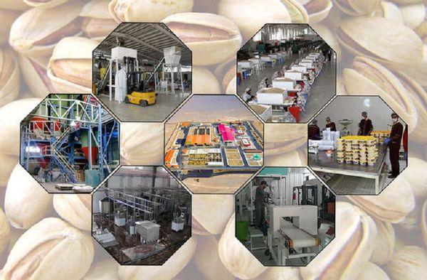 محصولات دامی و کشاورزی گلستان دور از دست صنایع تبدیلی