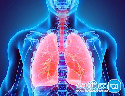 چگونه دستگاه تنفسی خود را مقابل کرونا مقاوم کنیم؟
