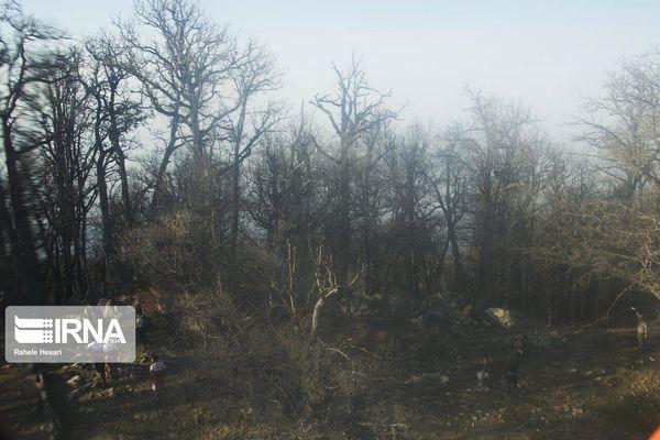 آتش عرصههای جنگلی گلستان مهار شد