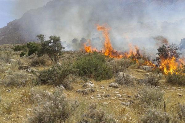 پایش منظم عرصههای جنگلی مستعد آتشسوزی گلستان
