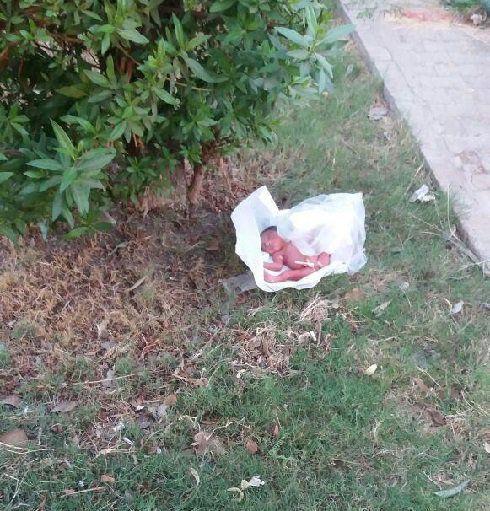 نوزاد دختر رها شده در فضای سبز در اهواز + عکس