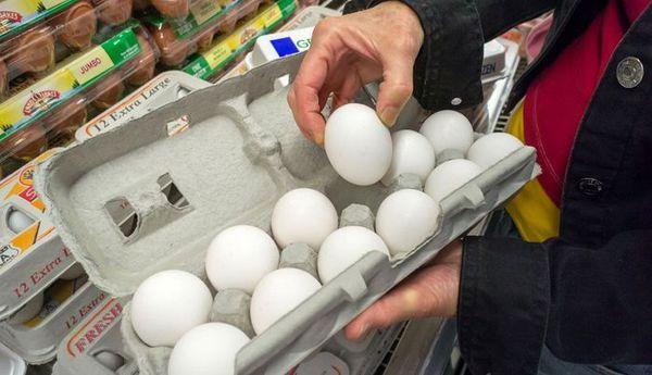 قیمت جدید تخم مرغ در بازار امروز (۹۹/۰۴/۲۹) + جدول