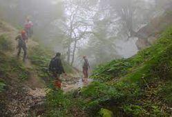 افراد گرفتار در ارتفاعات جنگلی روستای شموشک نجات یافتند