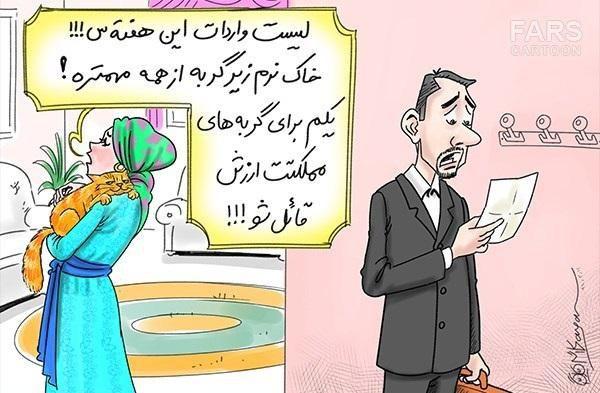 کاریکاتور/واردات خاک نرم گربه از چین!