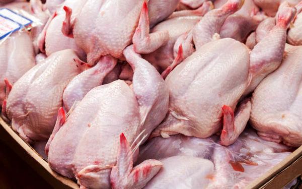 مرغ در بازار امروز کیلویی چند؟ (۹۹/۰۸/۱۱) + جدول
