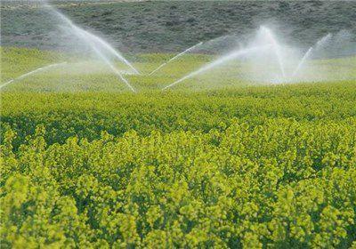اجرای سیستم نوین آبیاری در 45 هزار هکتار از اراضی گلستان