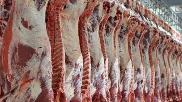 تولید بیش از ۲۰ هزار تن گوشت قرمز در گلستان