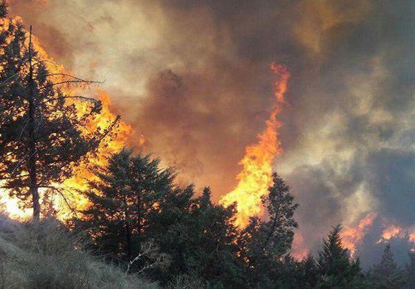 وقوع آتش سوزی در منطقه «سرعلیآباد» گرگان